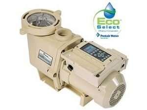 best multil speed pool pump