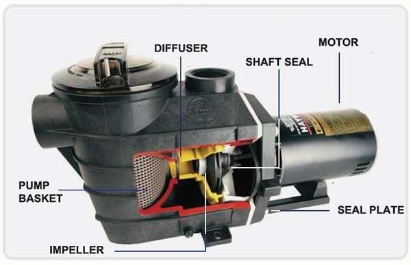 Pool Pump part breakdown diagram